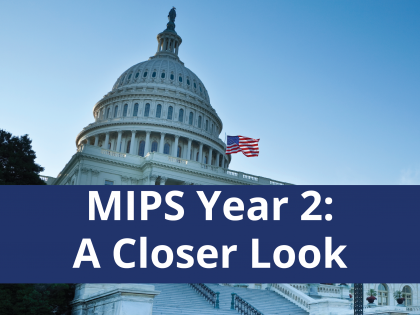 MIPS Year 2: A Closer Look